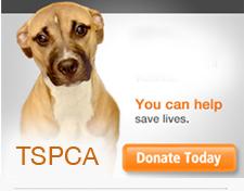 สมาคมป้องกันการทารุณสัตว์แห่งประเทศไทย (TSPCA)